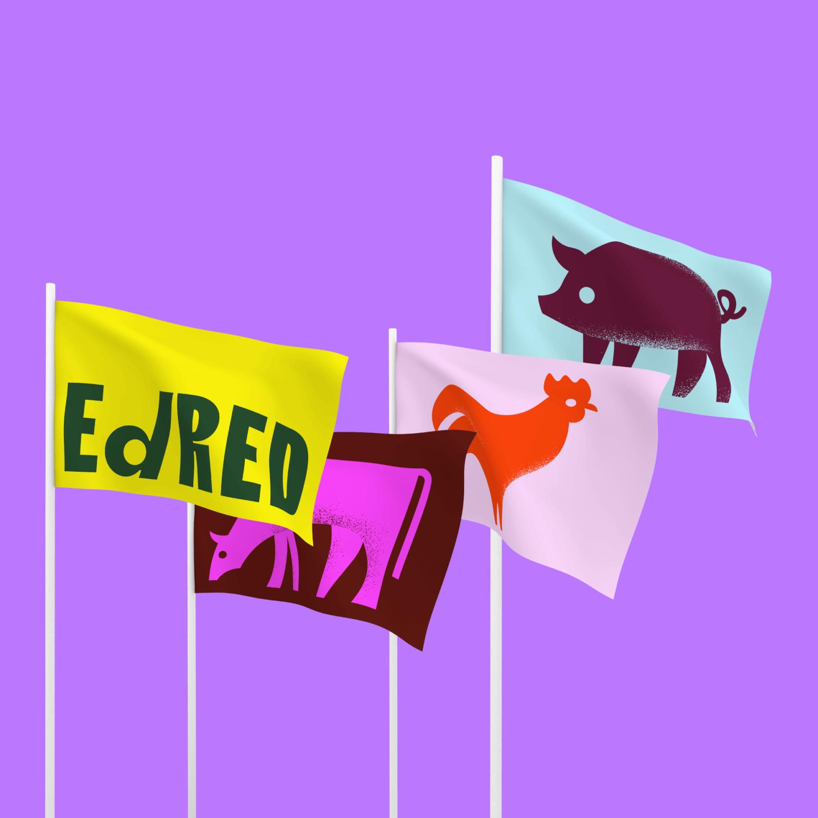 EdRED